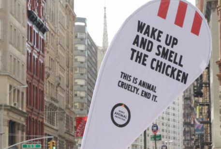 Change for Chickens KFC campaign in the US